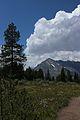 Grand Teton NP 2014 13.JPG