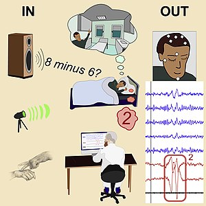 "Graphical abstract of ""Real-time dialogue between experimenters and dreamers during REM sleep"".jpg"