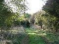Green Lane near Cowlam - geograph.org.uk - 1012062.jpg