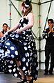 Grupo Andaluz de Munich - andalusischer Flamenco.JPG