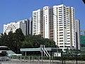 HK Shatin Siu Lek Yuen Road view Shek Mun industrial zone Ever Gain Centre n Building facades Sept-2012.JPG