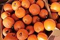Halloween pumpkins-IMG 2191.JPG