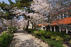 Takarazuka Station - Hana-no-michi (flower path) street in Takarazuka