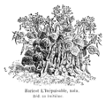 Haricot L'Inépuisable nain Vilmorin-Andrieux 1904.png