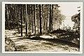 Harjutie, Äijönlahti, Takaharjun ranta, Silvonniemi, 1930s PK0258.jpg
