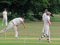 Hatfield Heath CC v. Takeley CC on Hatfield Heath village green, Essex, England 27.jpg