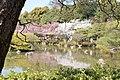 Heian Jingu Garden (3484435841).jpg
