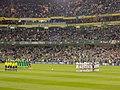 Heimspiel Irland Aviva Stadion (126472263).jpeg