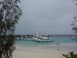 Heron Island (Queensland) - Harbour and jetty, loading passengers onto launch