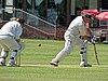 Hertfordshire County Cricket Club v Berkshire County Cricket Club at Radlett, Herts, England 036.jpg
