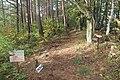 Hiking trail on Mount Tokura.jpg