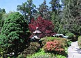 Hillwood Gardens in May (17913094686).jpg