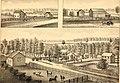 History of Ingham and Eaton counties, Michigan (1880) (14761048554).jpg