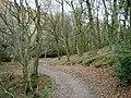 Hodder's Combe - geograph.org.uk - 1054436.jpg