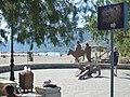 Holidays Greece - panoramio (315).jpg