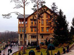Honka in Mezhyhirya, side view.jpg