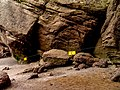 Hopewell Rocks New Brunswick (40033611242).jpg