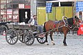 Horse, Carriage, & Driver - Old Town - Ayvalik - Turkey (5747829614).jpg