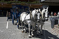 Horse cart, Zermatt.jpg