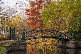 Botanische Tuin Amsterdam : Hortus botanicus amsterdam wikipedia