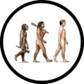 Human Evolution Icon.png