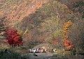 I本溪山区红叶 - panoramio.jpg