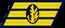 IDF Navy Ranks Samar.png