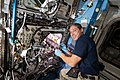 ISS-64 Hopkins checks on radish plants.jpg