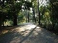 Ibirapuera 036 (6265210).jpg