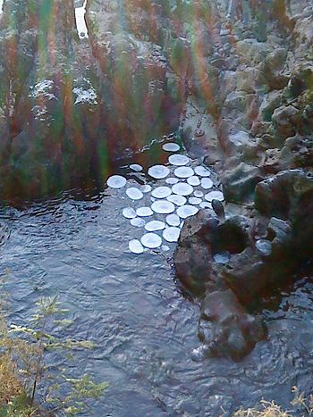 English: Ice circles in the river Llugwy at Be...