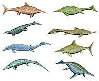 Ichthyosaurios5.jpg