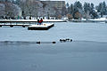 Icy Green Lake Seattle 2008.jpg