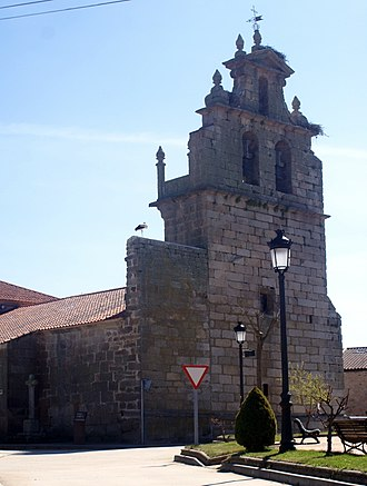 Villaseco de los Reyes - Church of Our Lady of the Immaculate Conception, in Villaseco de los Reyes. Parish Church.