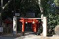 Ikuta-jinja Kobe08n4272.jpg