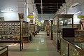 Indian Museum, Gallery, Kolkata, India.jpg