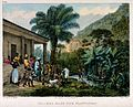 Indians on a coffee plantation washing in a lake and gatheri Wellcome V0019185.jpg