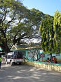 Infanta,Pangasinanjf0262 11.JPG