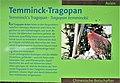 Informationstafel Röhrensee 20.jpg
