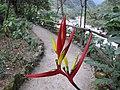 Inkaterra Machu Picchu Pueblo Hotel and Nature Reserve - Aguas Calientes, Peru (4875674721).jpg