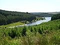 Inlet in Kielder Water - geograph.org.uk - 203785.jpg