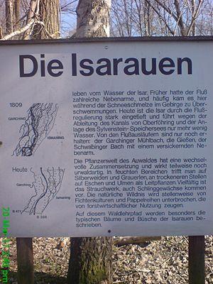 Isar - Isarauen