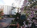 Iwanumaya hotel entrance.jpg
