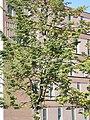 Jægergården (facade 04).jpg