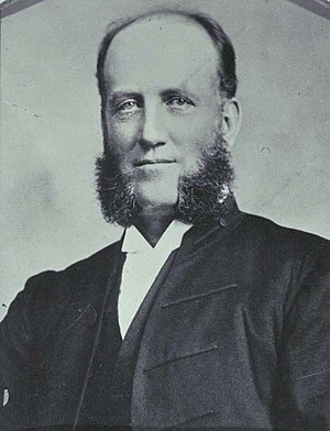 Joseph Palmer Abbott - Abbott at the 1898 Australasian Federal Convention.