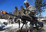 JBER Expert Infantryman Badge testing 130422-F-LX370-907.jpg