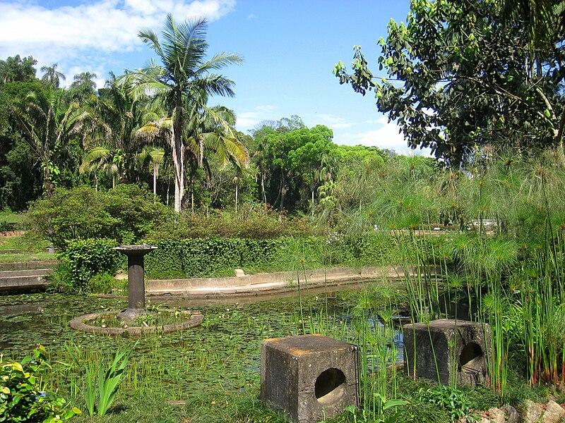 File:Jardim Botânico de São Paulo - general view IMG 0110.jpg