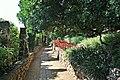 Jardines de cap roig-calella de palafurgell-8-2013 (8).JPG