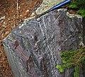 Jaspilite banded iron formation (Soudan Iron-Formation, Neoarchean, ~2.69 Ga; Rt. 169 roadcut between Soudan & Robinson, Minnesota, USA) 4 (18852383290).jpg