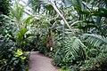 Jena - botanical garden 09 (aka).jpg