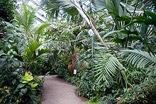 Botanischer Garten Jena Wikipedia